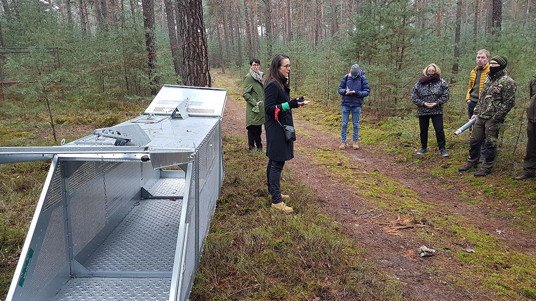 Crisisleider Anna Heyer-Stuffer geeft aan de verzamelde pers uitleg over een vangkooi voor wilde zwijnen. - Foto: MSGIV