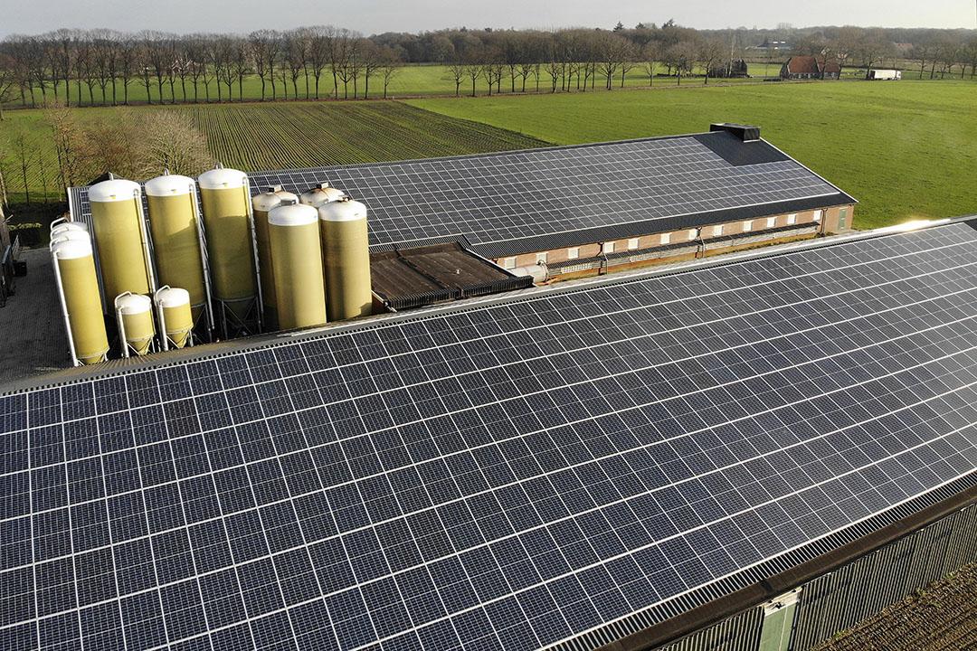 Zonnepanelen op het dak van een varkensstal. - Foto: Hans Prinsen