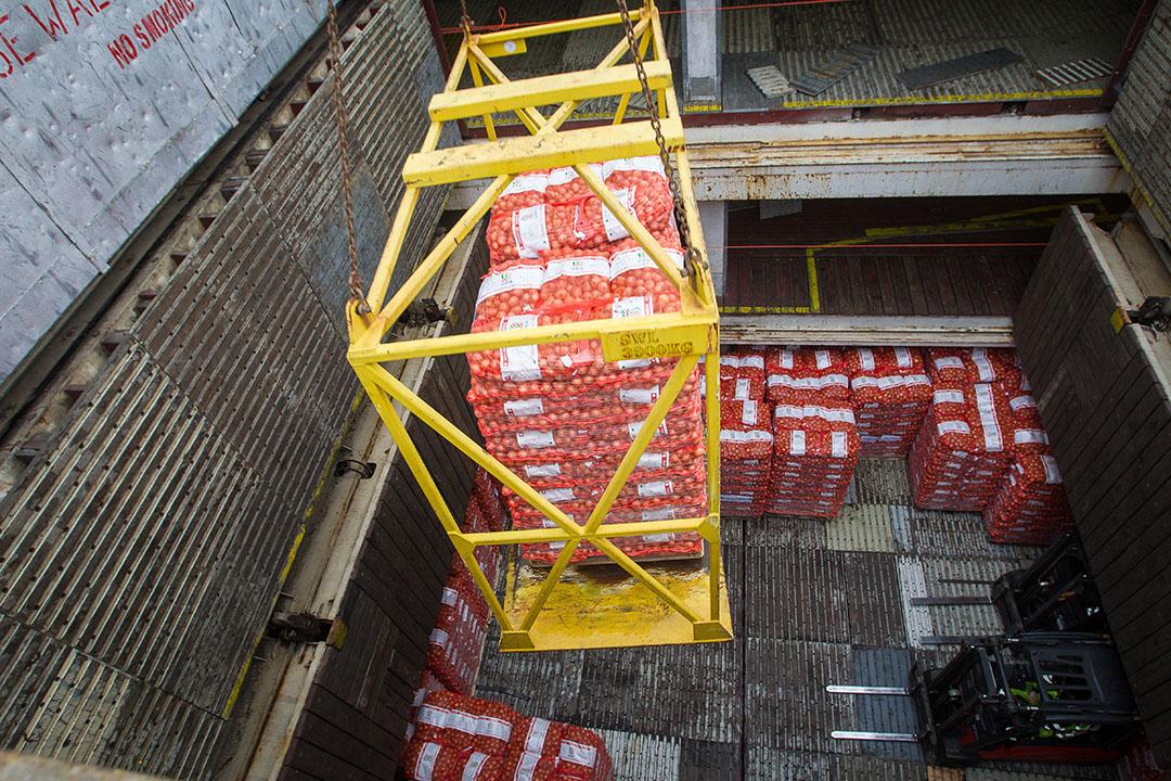 Uien laden voor export naar Senegal. - Foto: Peter Roek