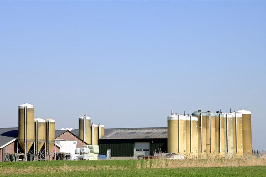 Varkensbedrijf in Brabant, op archiefbeeld. - Foto: ANP