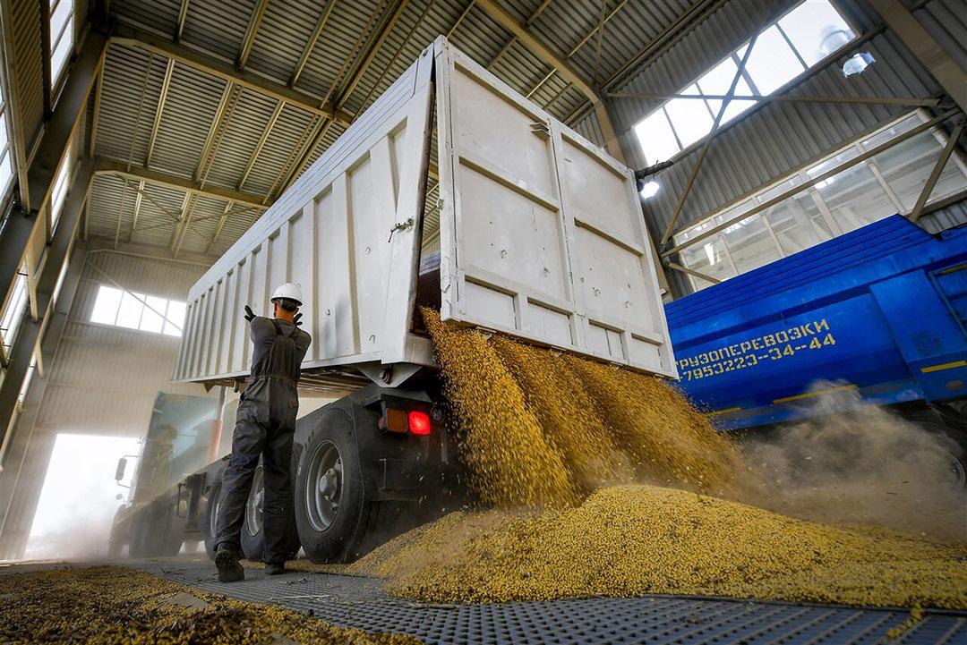 Het lossen van sojabonen in Rusland. Bij sojabonen is de wereldwijde productie ontoereikend voor het verbruik. - Foto: ANP