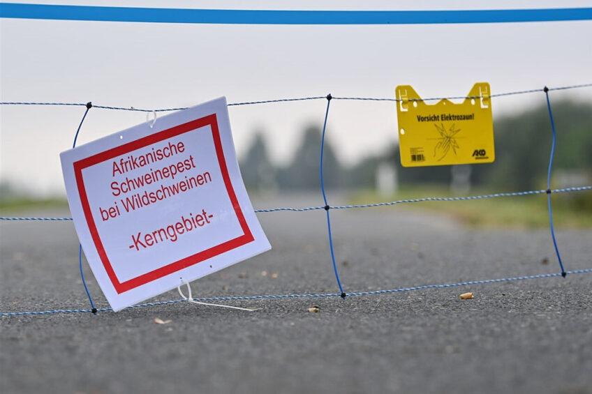 De Duitse deelstaat breidde één van de drie kernzones door een voorlopige afrastering - hier over een weg in de Oderbruch - uit. - Foto: ANP