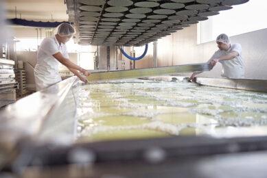 Kaasproductie in de kaasmakerij in Studer. Emmi behaalde vorig jaar goede resultaten voor de grotendeels boerenaandeelhouders. - Foto: Ueli Steingruber