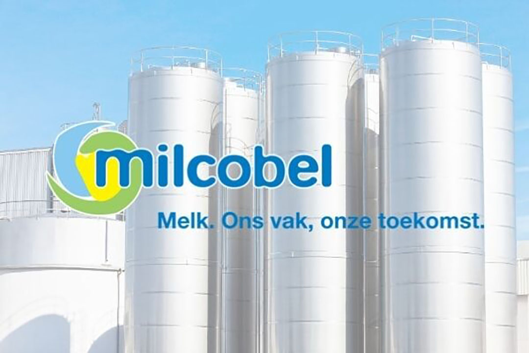 Foto: Canva en Milcobel