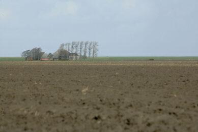 Wijds land aan de Wadden, goede grond en door bomen omzoomde boerderijen. - Foto: Henk Riswick