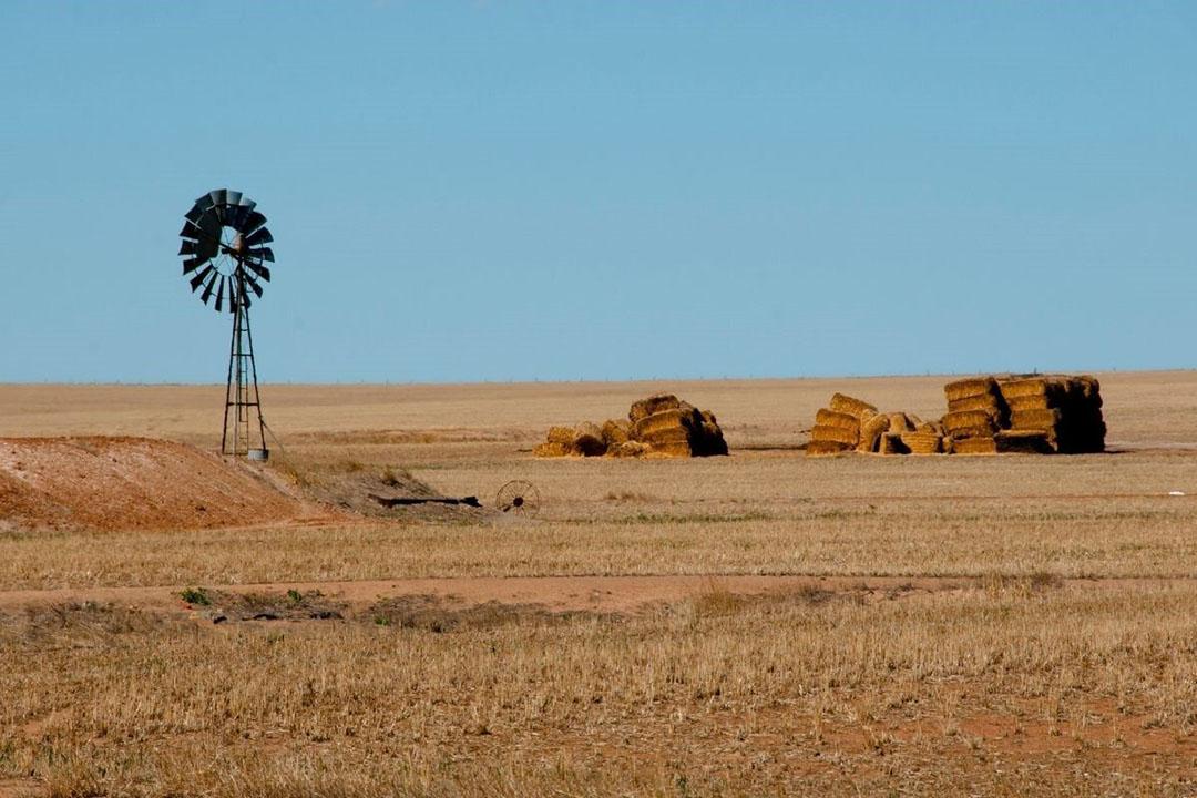Als het gaat om de waarde van bedrijven in de Australische landbouw, dan is Canada de grootste investeerder. Foto: Canva