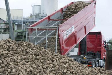 Suikerbieten worden aangeleverd bij de verwerkingsfabriek in Vierverlaten.- Foto: Mark Pasveer