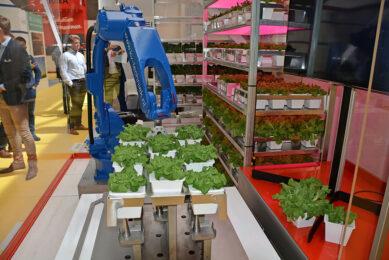 Vertical farming in combinatie met robotisering en individuele watergift. - Foto: Peter Visser