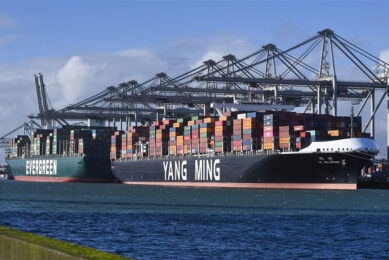 Containeroverslag in de haven van Rotterdam. - Foto: ANP HH/Peter Hilz
