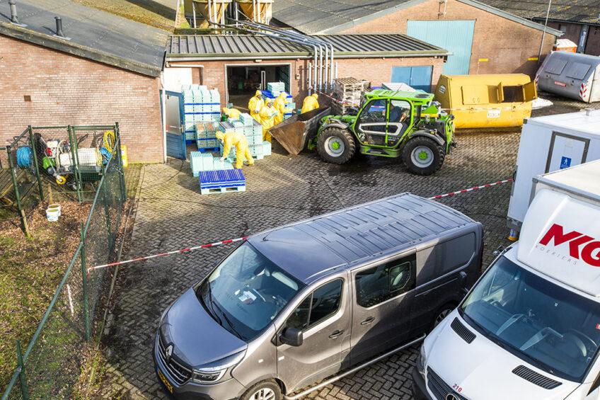 Afgelopen zaterdag werd bekend dat er op een leghennenbedrijf met 35.000 dieren in Sint-Oedenrode hoogpathogene vogelgriep is vastgesteld. Foto: Bert Jansen