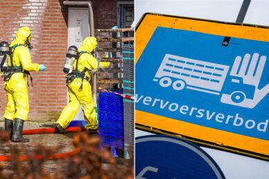 In de rond het besmette leghennenbedrijf ingestelde 10 kilometerzone liggen nog 26 pluimveebedrijven. - Foto: Bert Jansen / ANP