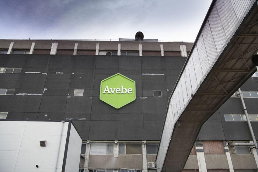Zetmeeltelers – en ook consumptietelers – spreken van een herwaardering van Avebe. Foto: Mark Pasveer