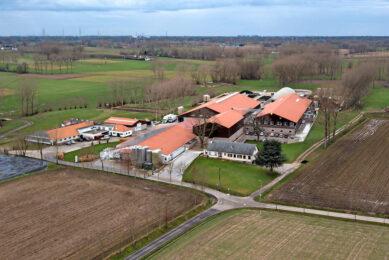 Voorbeeldbedrijf De Hollebeekhoeve in het Belgische Kruibeke. - Foto: Peter Roek