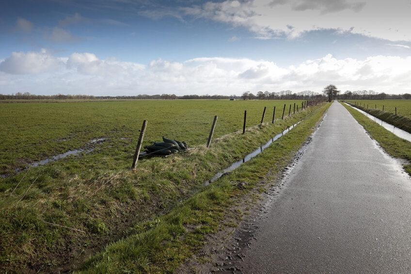 Foto: Jan Willem van Vliet