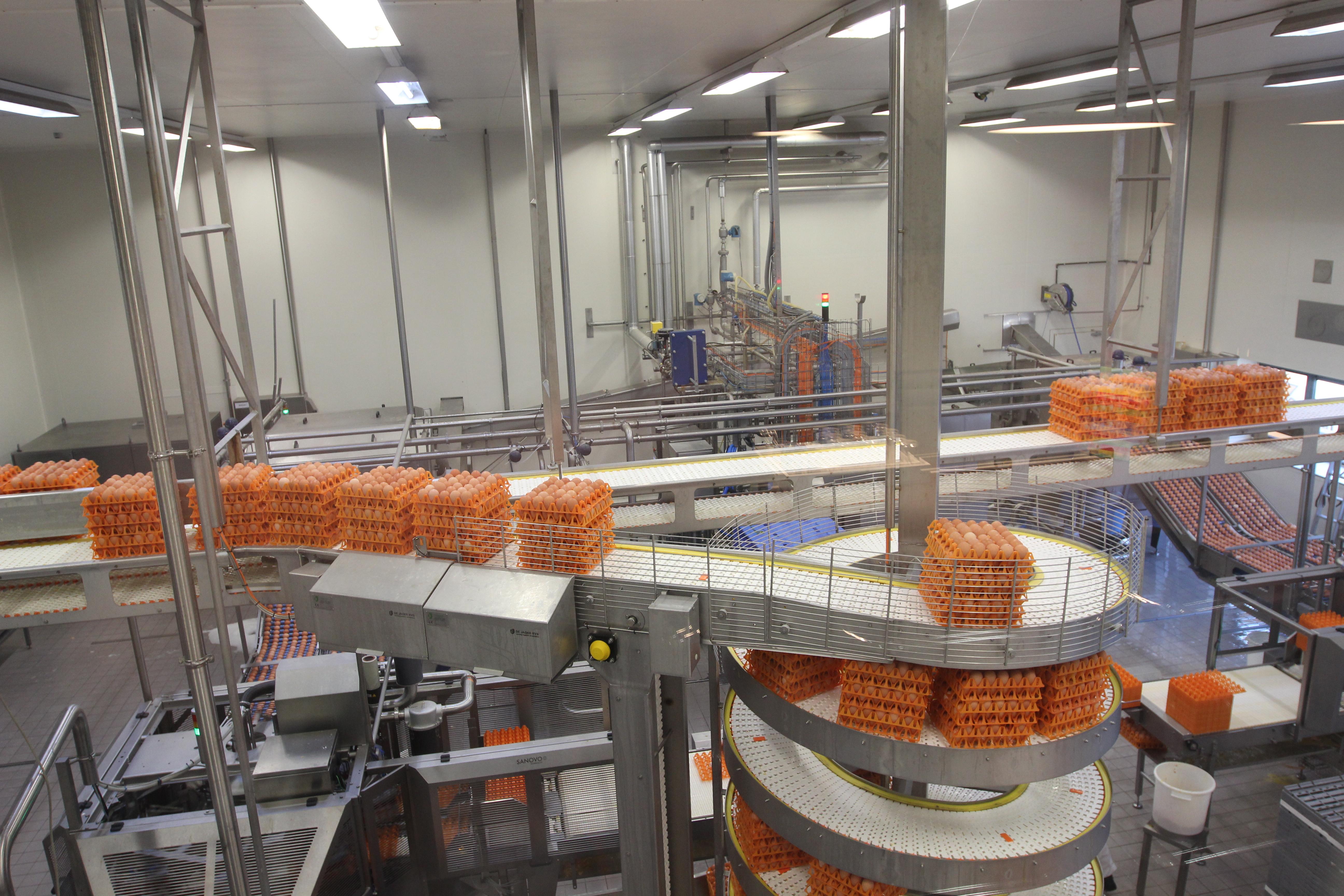 Hardeman Egg Group neemt eierverwerker over