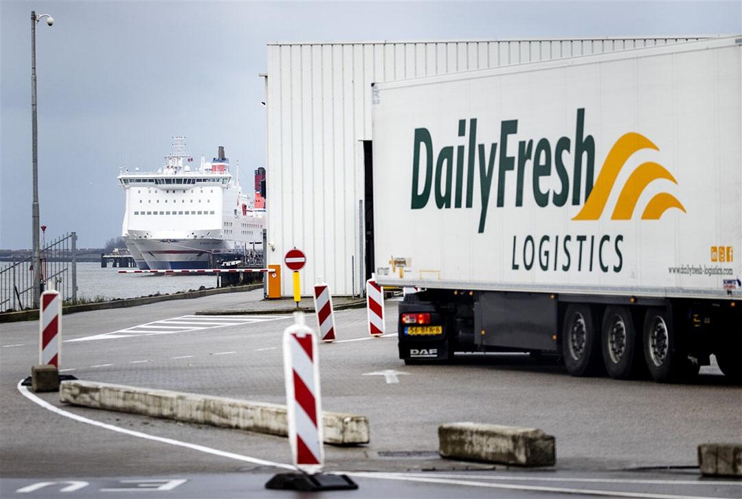 Vrachtwagens in de haven van Hoek van Holland. De regering in Londen besloot vorige week de inkomende handel voorlopig vrij te laten. - Foto: ANP