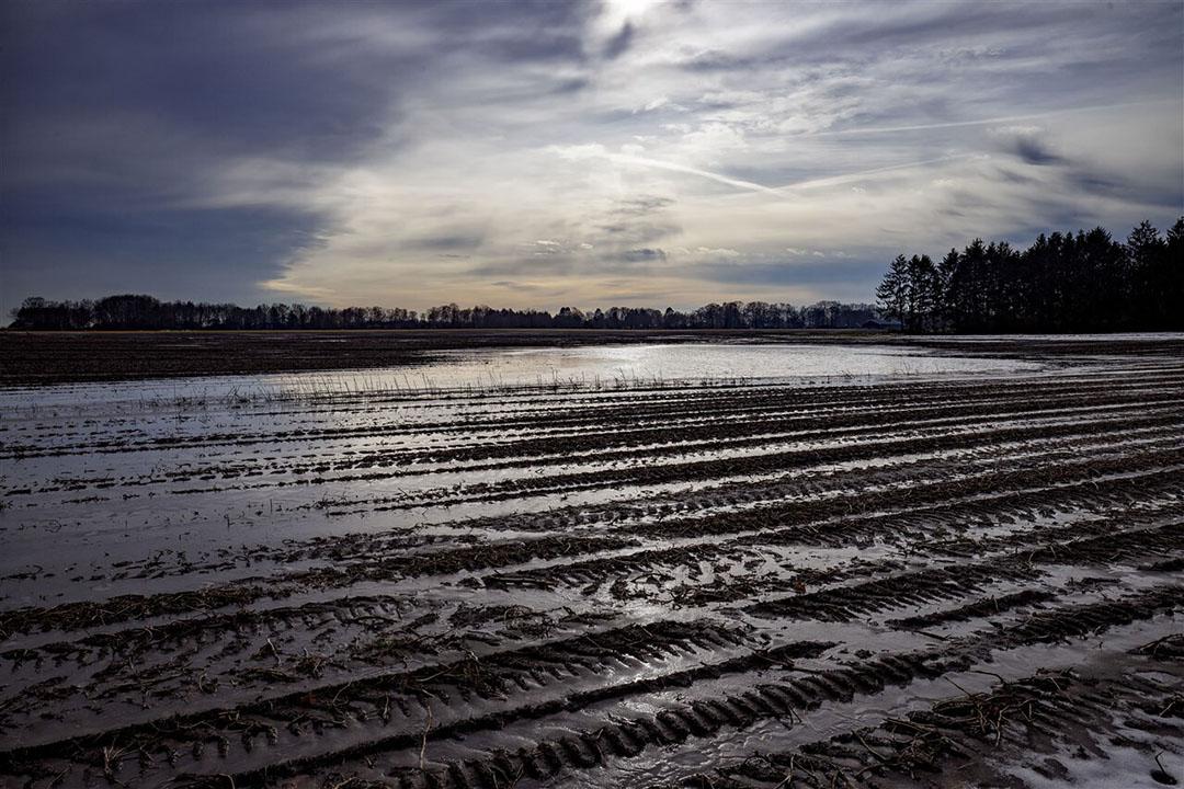 De grondwaterstand is op dit moment in het zuiden en oosten van het land 'verre van ideaal', ondanks een vrij natte winterperiode en tal van maatregelen om water langer in de bodem vast te houden. - Foto: ANP