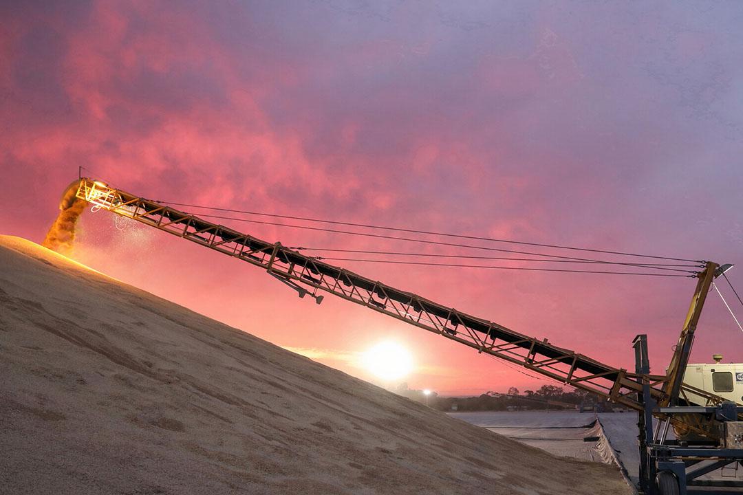 Met 33,3 miljoen ton is de winteroogst van tarwe de beste ooit. - Foto: Graincorp