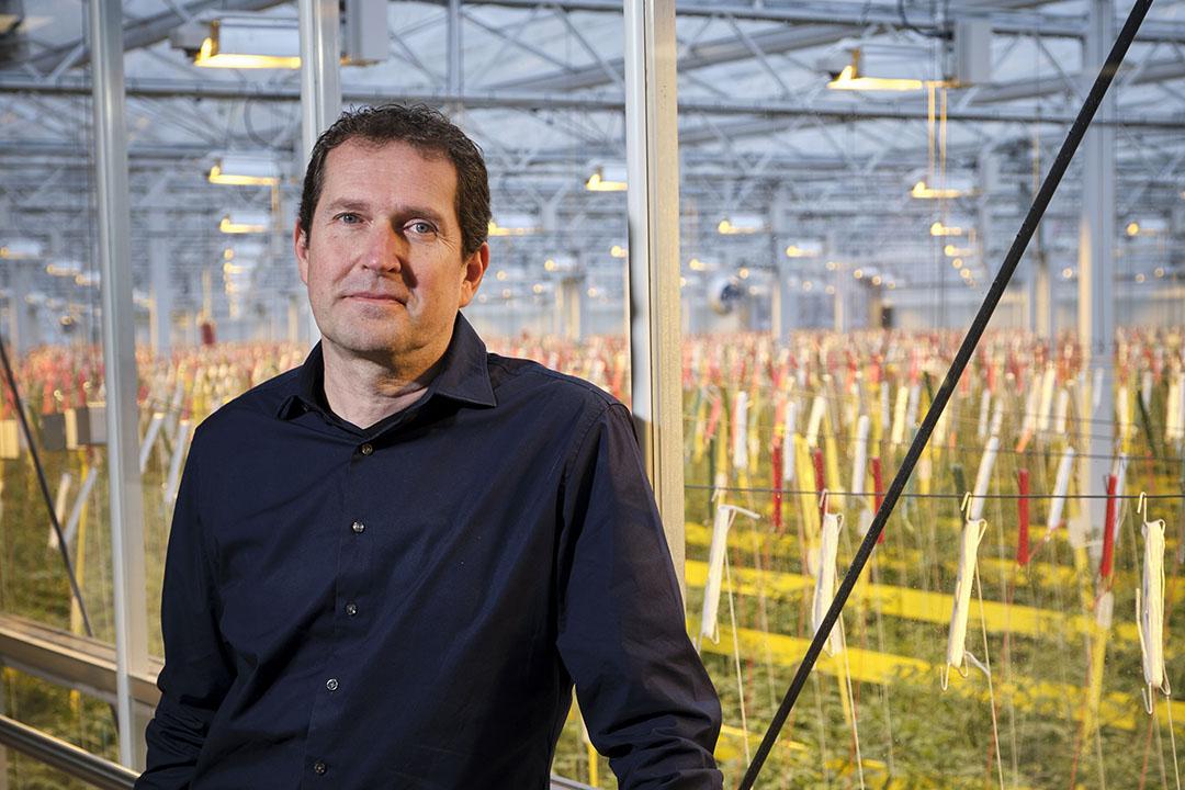 Joost van Regteren (50) is hoofd marktontwikkeling en managing director bij Bayer Vegetable Seeds. - Foto: Roel Dijkstra Fotografie / Fred Libochant