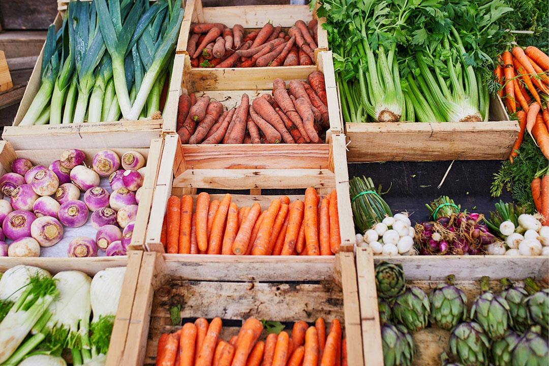 Foto: Canva.com