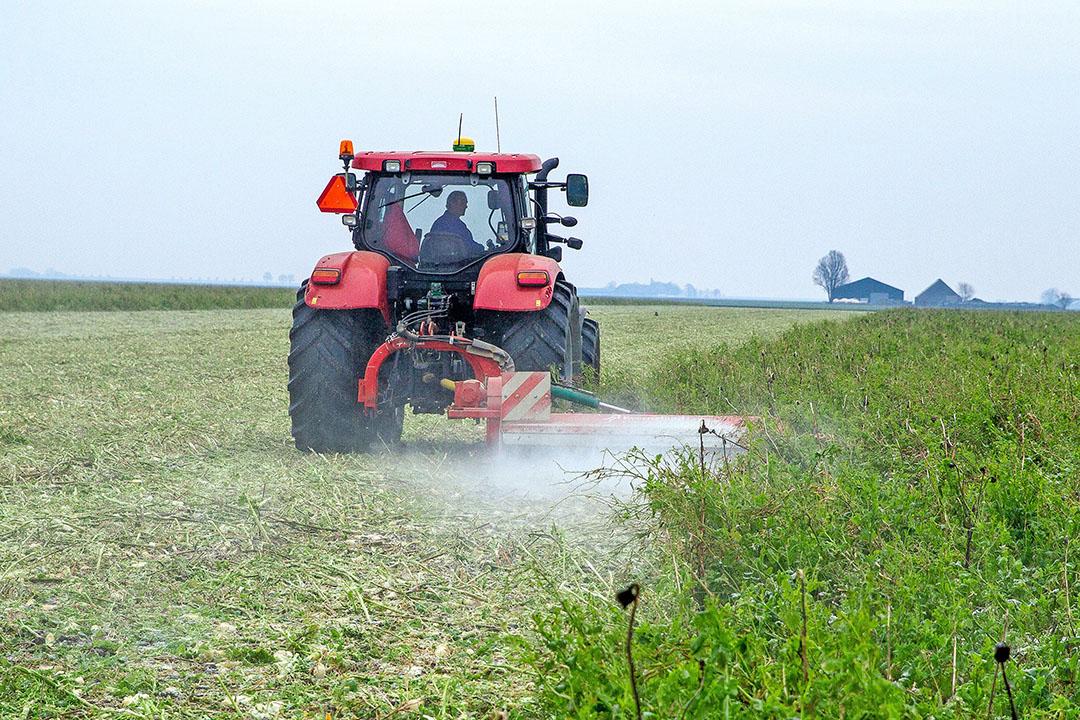 Een akkerbouwer klepelt een groenbemester. Een groenbemester verhoogt het organische stofgehalte in de grond waardoor CO2 wordt vastgelegd. - Foto: Koos van der Spek