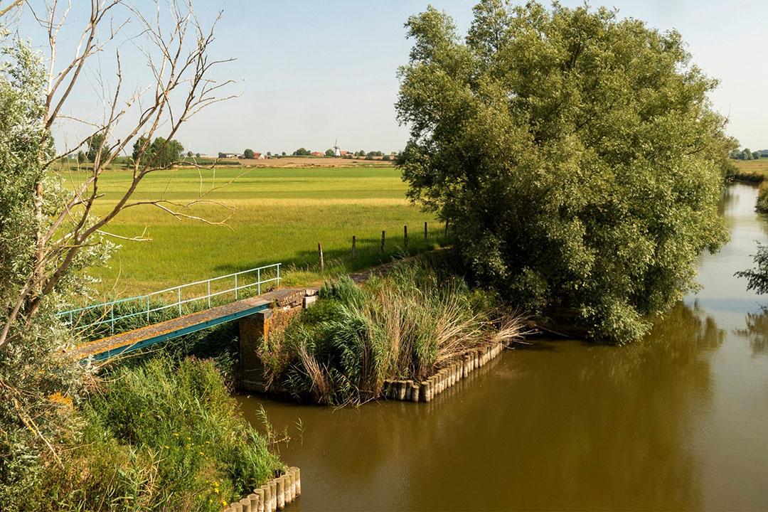 Het Vlaamse landschap. Om inzicht te krijgen in wie wanneer water nodig heeft, lanceert de Vlaamse overheid de online WaterRadar. Foto: Canva