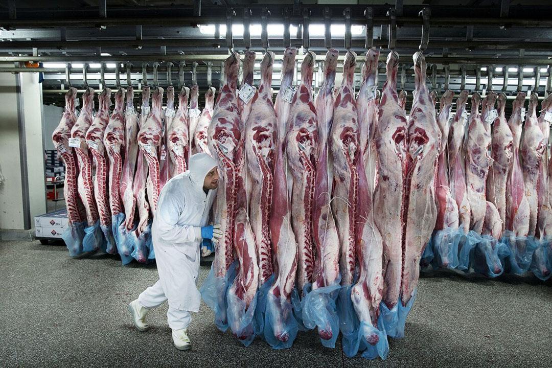 Archiefbeeld uit een uitbeenderij voor kalfsvlees. - Foto: ANP