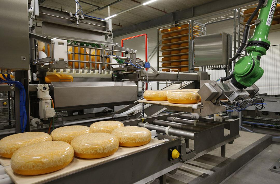 De export van de grootste zuivelproducten kaas (-2%) en mageremelkpoeder (-1%) bleef bijna gelijk ten opzichte van januari en februari van 2020. Japan blijft de grootste afnemer van kaas voor de EU met 18.220 ton. - Foto: ANP