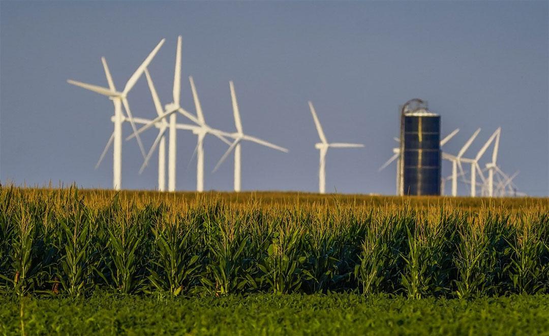 De akkerbouwers in de VS hebben 36,9 miljoen hectare mais gepland. Volgens marktbureau Agritel was de handel uitgegaan van 37,7 miljoen hectare mais. Foto: ANP