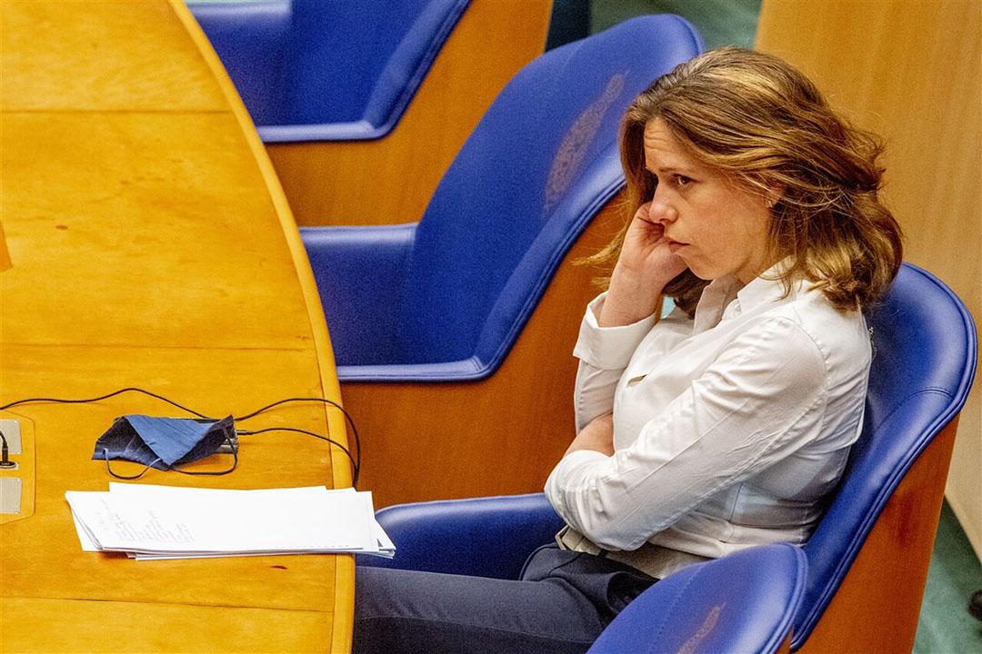 Het eerste debat tussen de nieuwe Tweede Kamer en demissionair landbouwminister Carola Schouten gaat over de inzet van ggo-soja. Foto: ANP