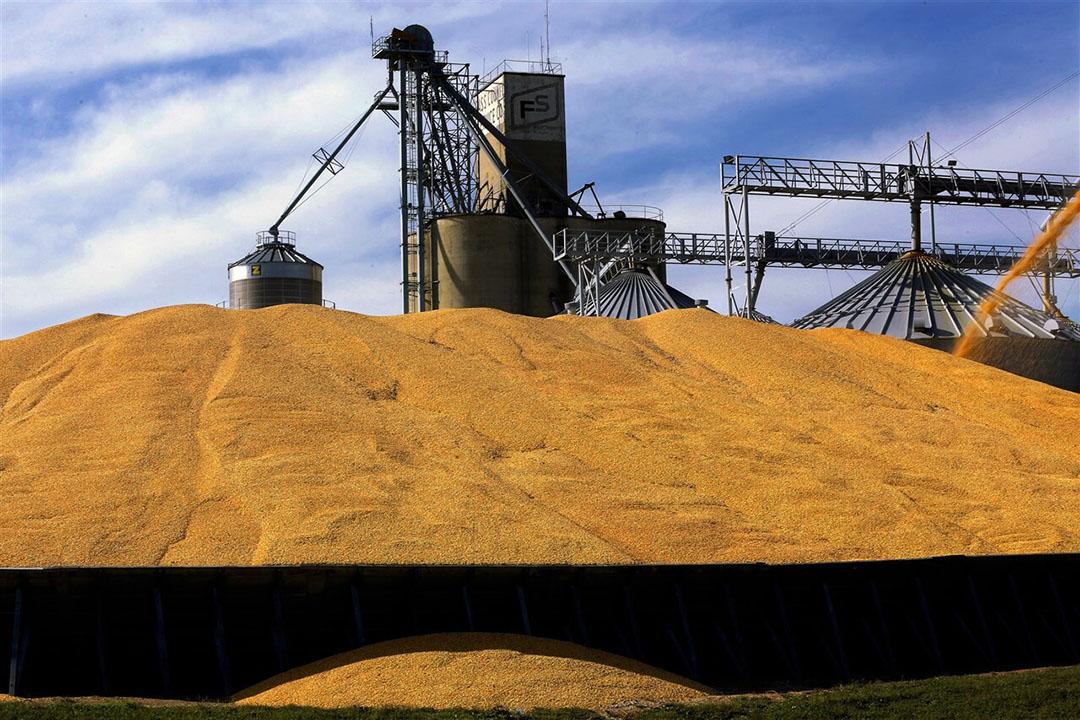 Mais wordt gestort bij volle graansilo's in de VS. Terwijl China fors meer importeert, is in de VS nauwelijks meer mais gezaaid dan vorig jaar. - Foto: ANP