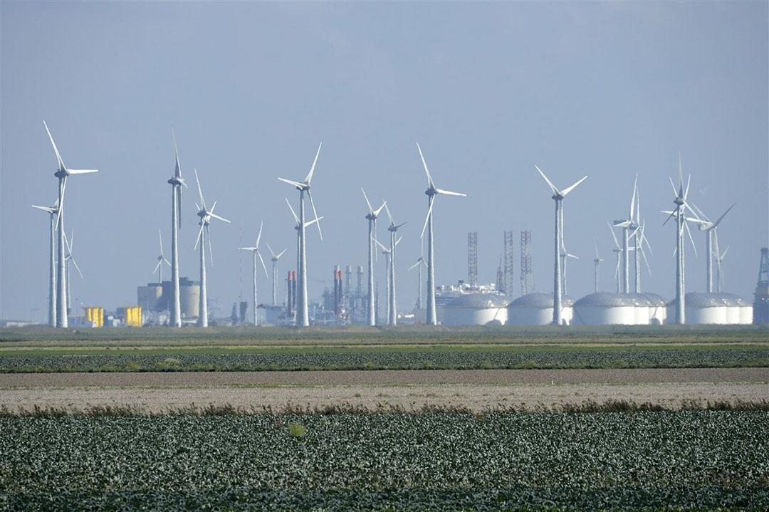 Landbouwpercelen bij de Eemshaven. - Foto: ANP