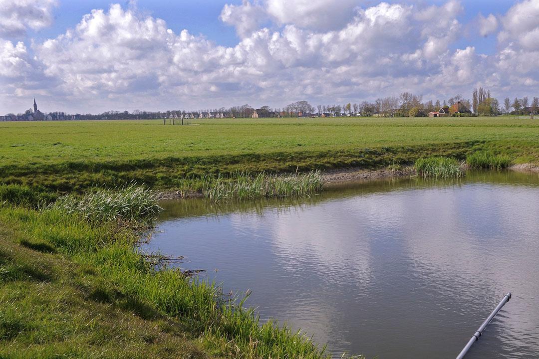 Grasland in Middenbeemster (N.-H.). - Foto: Fotopersbureau Dijkstra