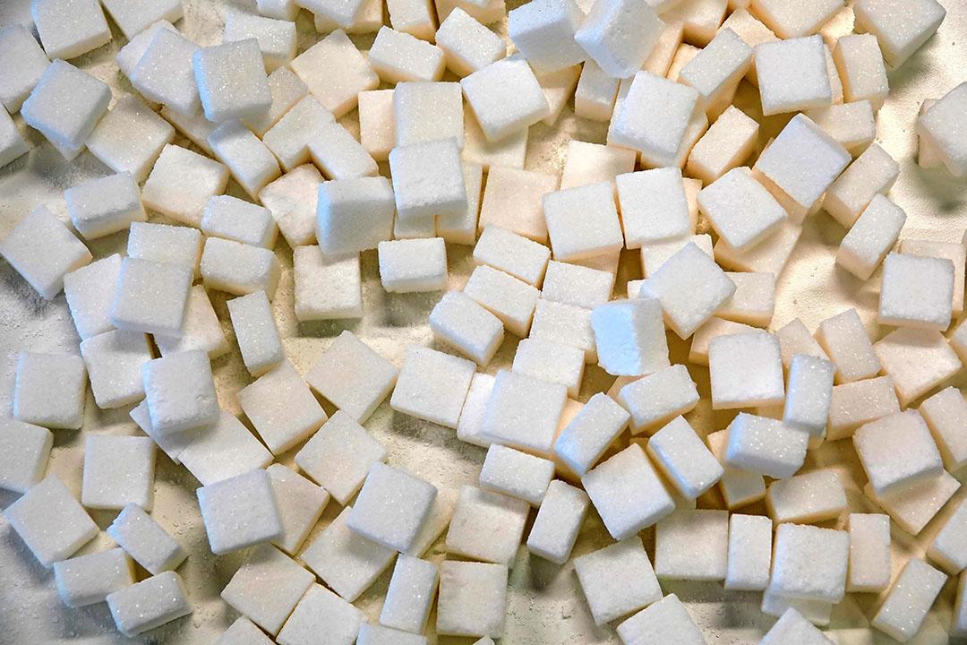 Voorraad suiker in de EU krimpt. Foto: Lex Aalders