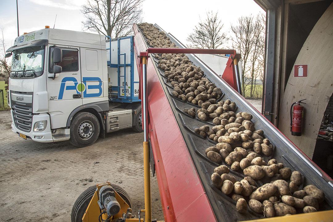 Het laden van aardappelen voor de fritesverwerking. - Foto: Koos Groenewold