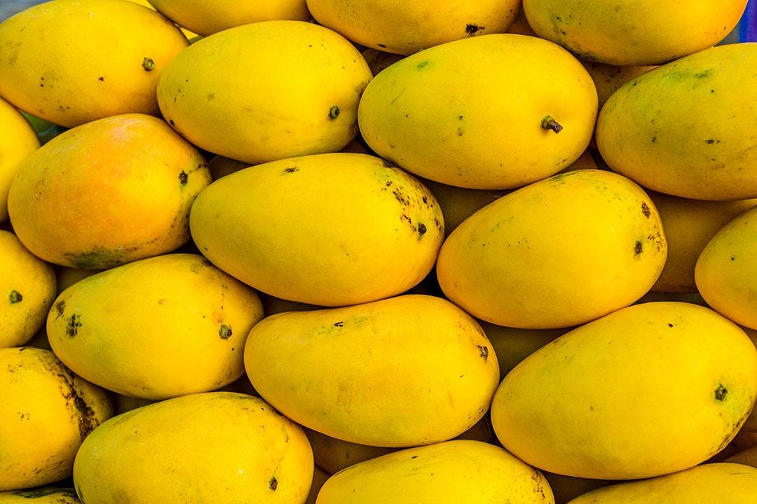 De nieuwe rijpingstechnologie zorgt onder meer voor een langere houdbaarheid van fruit als bananen, mango en avocado. Foto: Canva