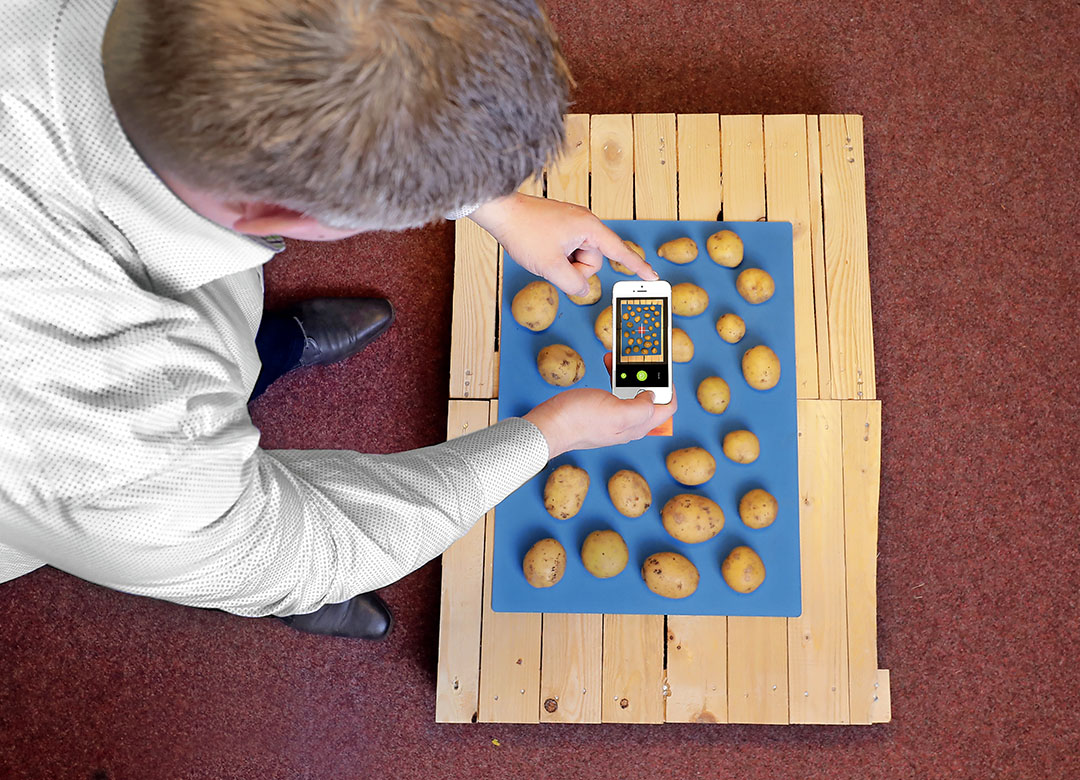 De SolGrader van Solentum geeft bij een proefrooiing informatie over kilo-opbrengst en maatverdeling van de aardappelen. - Foto: Ruud Ploeg