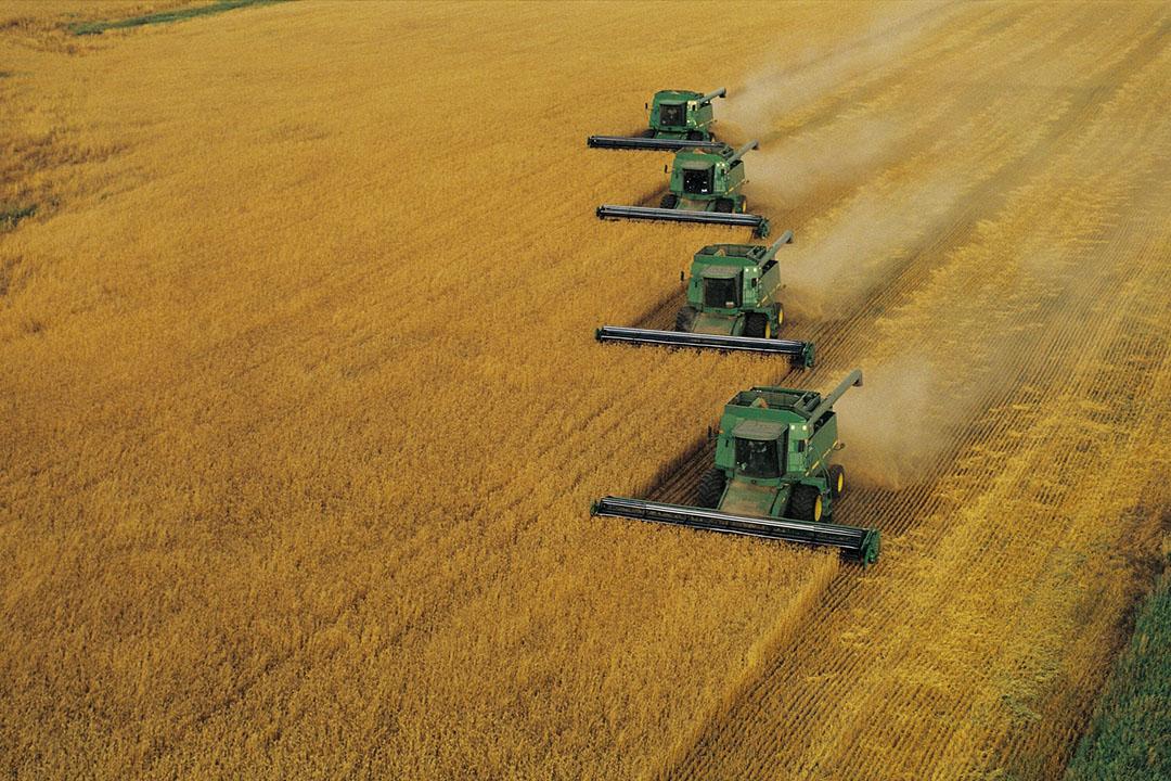 De oogst van tarwe. De prijs van tarwe kent al tijden een dalende lijn. - Foto: Canva.com