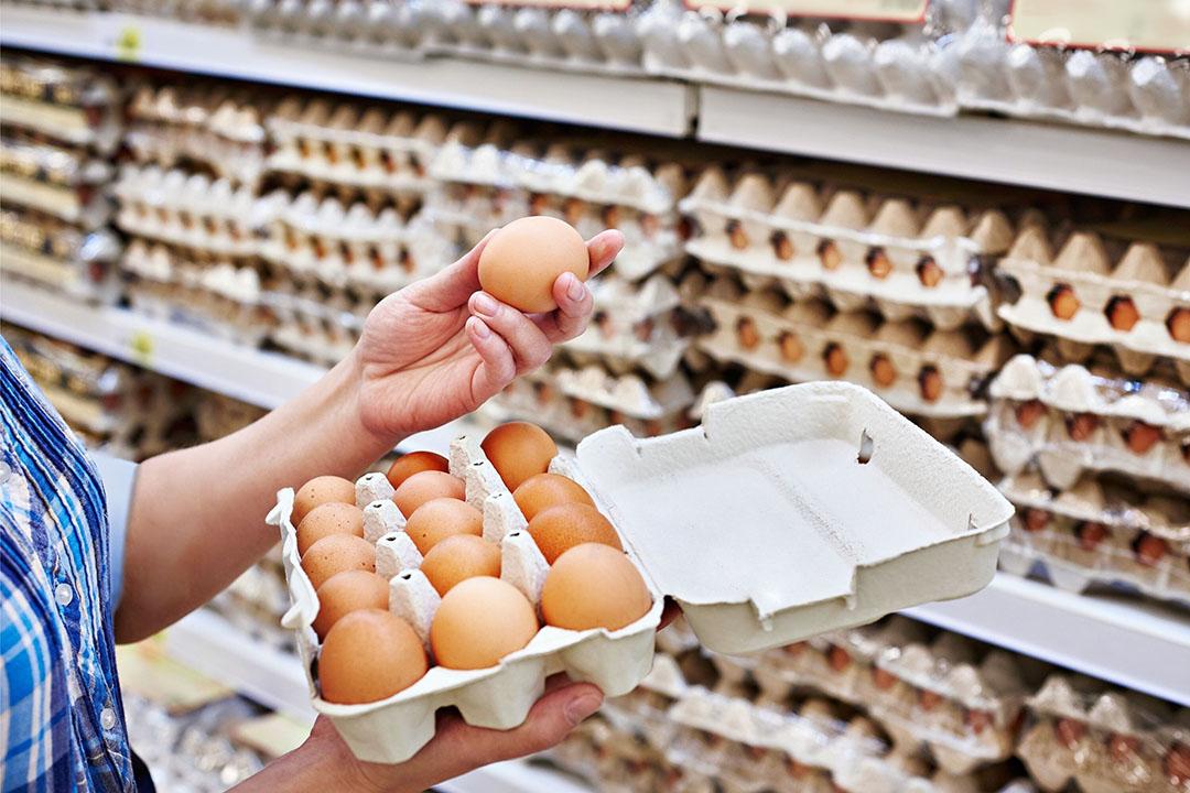 Duitsland is de grootste afnemer van Nederlandse eieren. - Foto: Canva