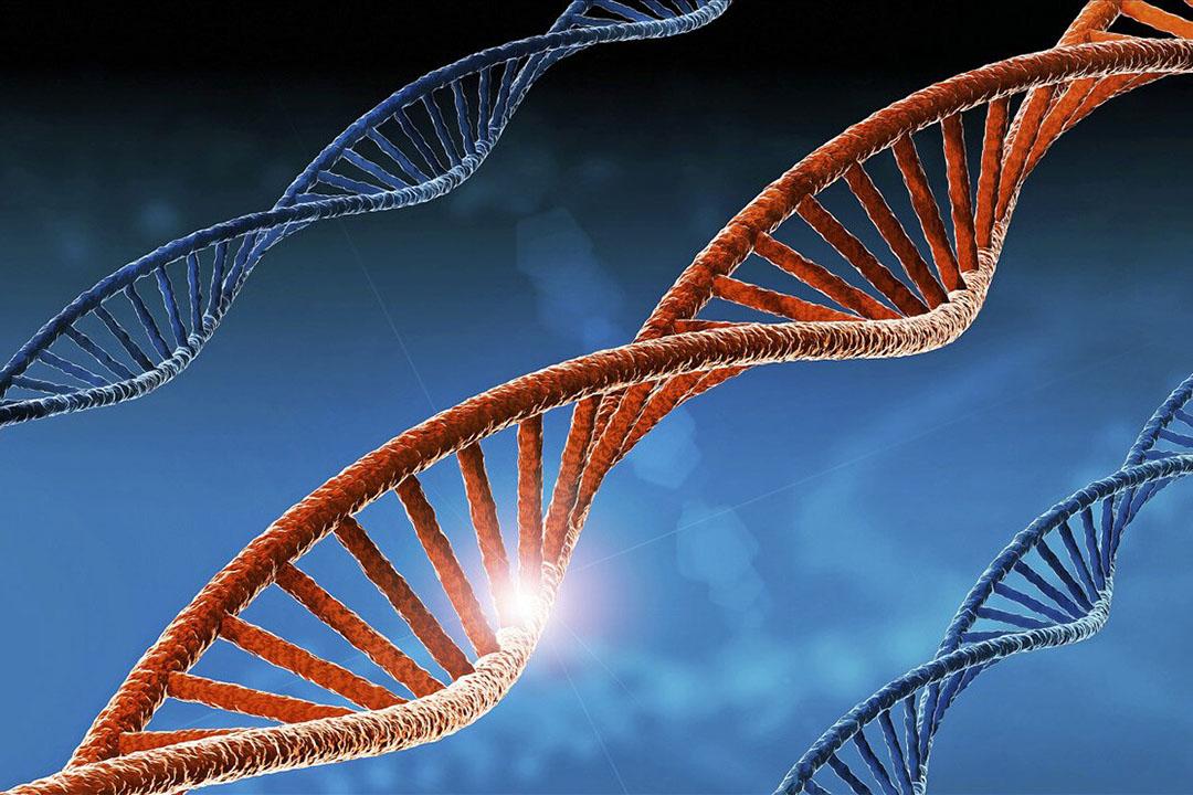 Beeld van technologie voor verandering van DNA. - Foto: ANP