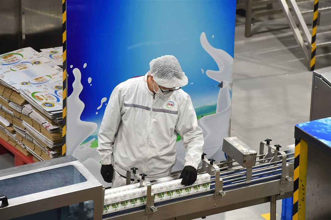 Melkproductie bij Yili Industrial Group in Hohhot, Noord-China. - Foto: ANP