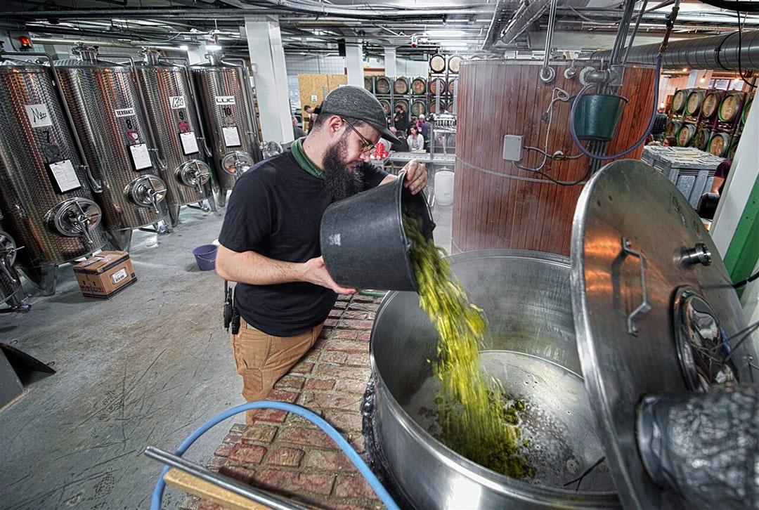 Bierbrouwerij Nevel in Nijmegen brouwt met alleen Gelderse ingrediënten. Een mooi voorbeeld van duurzaam ondernemen. - Foto: ANP