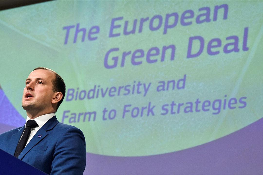 Eurocommissaris voor Milieu Virginijus Sinkevicius. - Foto: ANP