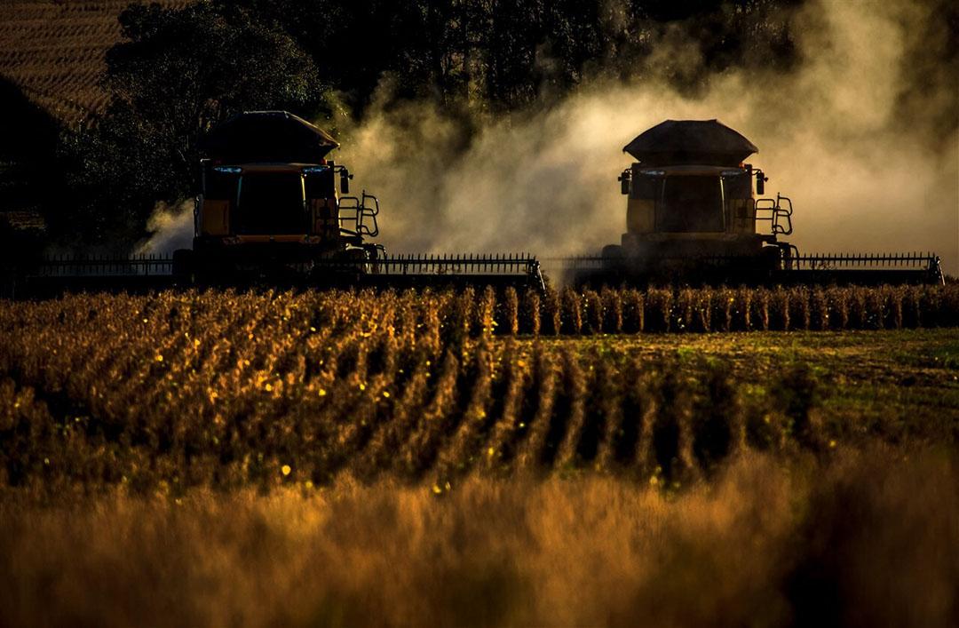 De oogst van sojabonen in de Braziliaanse provincie Rio Grande do Sul. - Foto: ANP