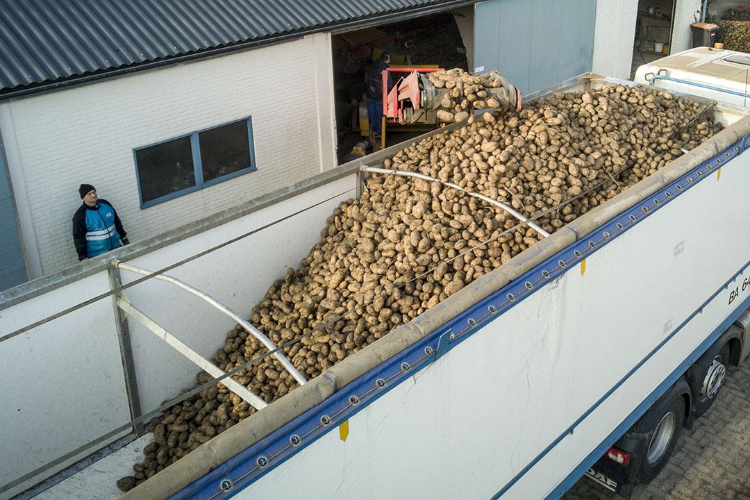Het laden van aardappelen bij een teler. - Foto: Koos Groenewold