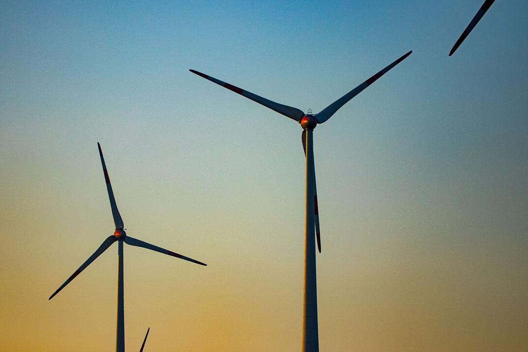 Het Klimaatfonds gaat bedrijven financieren die zich inzetten voor duurzame landbouw en landgebruik en zo uitstoot reduceren op hun bedrijf. Foto: ANP