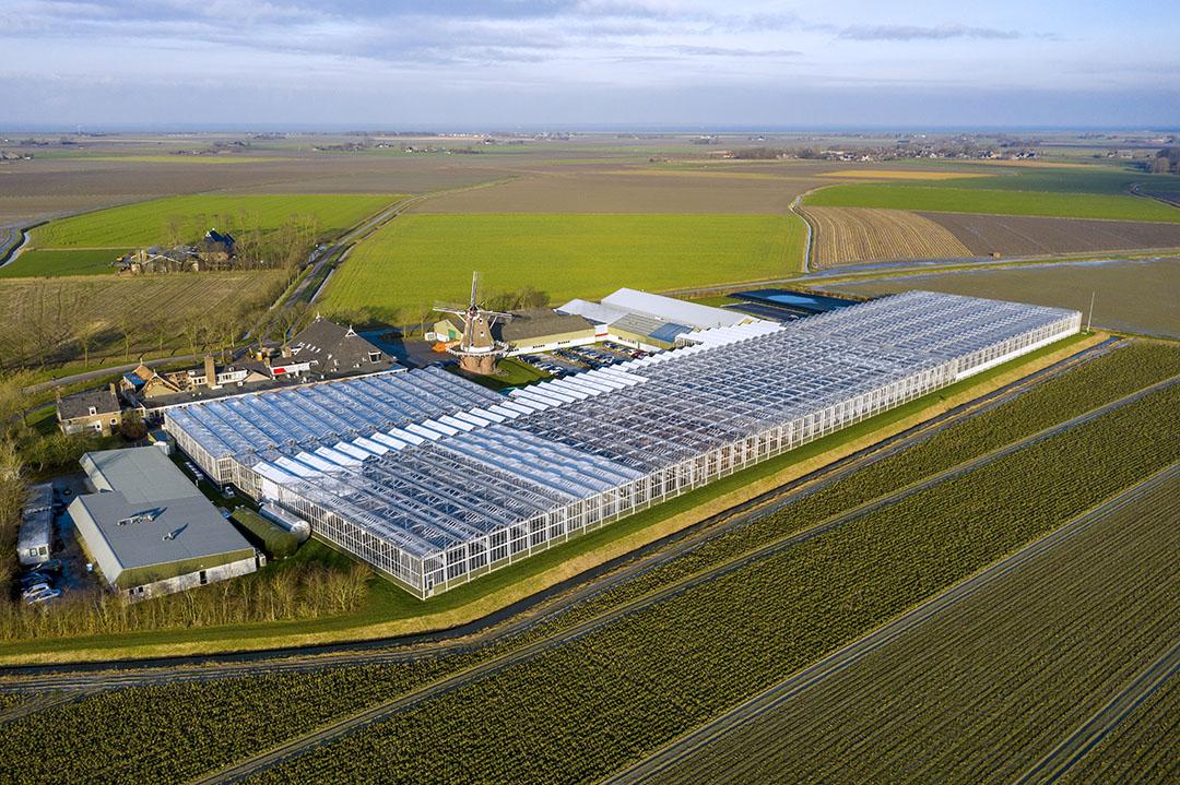Het HZPC-kweekbedrijf in Metslawier (Fr). - Foto: Ruud Ploeg