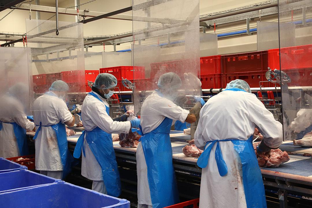 Rabobank voorziet vooral prijsdruk op de varkensmarkt in Nederland en Duitsland. - Foto: Henk Riswick