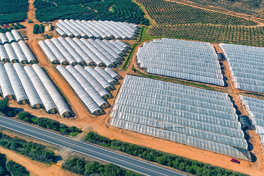 In Spanje noteerde de landbouw in het eerste halfjaar een plus van 4,4%, terwijl de voedingsmiddelensector 2020 afsloot met een min van 3,6%. Foto: Canva