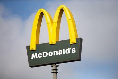 Varkens in Nood bracht undercoverbeelden naar buiten over misstanden in slachthuis Gosschalk in Epe. Fastfoodketen McDonald's wil geen vlees meer afnemen van de slachterij. - Foto: Harold Versteeg / Hollandse Hoogte / ANP